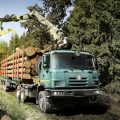 Important Tips To Purchase A Forestry Truck
